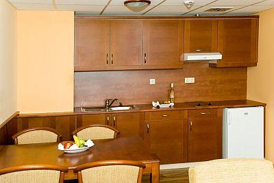 Airport Hotel Apartman 4* hotel at the Liszt Ferenc airport - Airport Hotel Budapest**** - Discount hotel with free transport from the airport