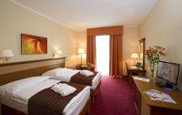 Hotel room on affordable price in Hungary Hotel Balneo Zsori
