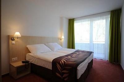 chambre d'hôtel pas chère dans l'hôtel hunguest béke à hajduszoboszlo