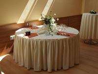 Conference room for up to 220 people at Cserkeszolo, only 30 km from Kecskemet - Aqua Spa Wellness Bungalow