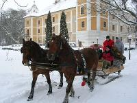 Romantic programs in the Hedervary Castle Hotel in Hedervar - horse drawn sleigh