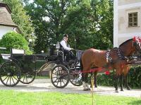 Hedervary Castle Hotel - horse carriage ride - Hedervar