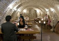 Winecellar with wine tasting - Castle Hotel Hedervar Hungary