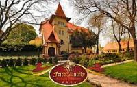 Fried Castle Hotel Simontornya - castle hotel in the heart of a French park