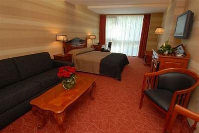 Hermosa habitaci n doble en el hotel wellness y selfness for Habitaciones de hotel para 5 personas