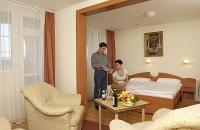 Double room in Hotel Park Eger - Wellness & Conference Hotel Eger Park
