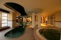 Wellness centre in Hotel Kikelet - indoor pool in Pecs