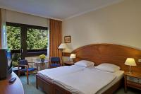 Double room in Hotel Lover - wellness hotel in Sopron
