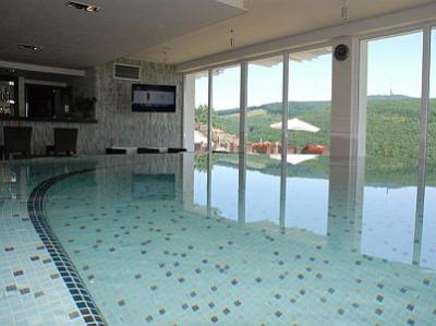 Wellness pool with panoramic view to kekesteto in hotel for Hotel avec piscine interieur montreal