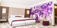 Ambient Hotel in Sikonda with lavender perfumed rooms