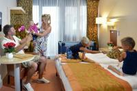 Hotel Sopron**** - available hotel room with half board at cheap price